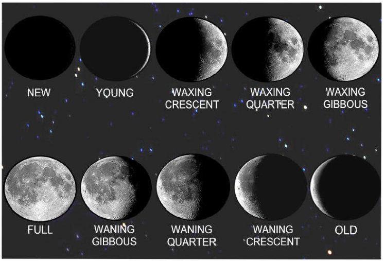 Image Gallery nasa moon phases